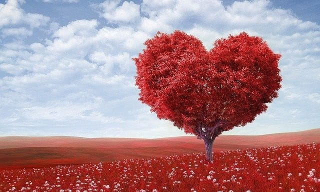 history of valentines day - valentine's day origin - valentine's day ideas